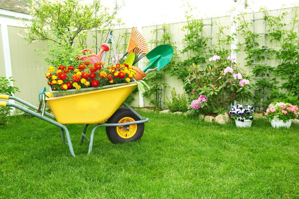 Cuida tu jardín y cuidarás tu estrés