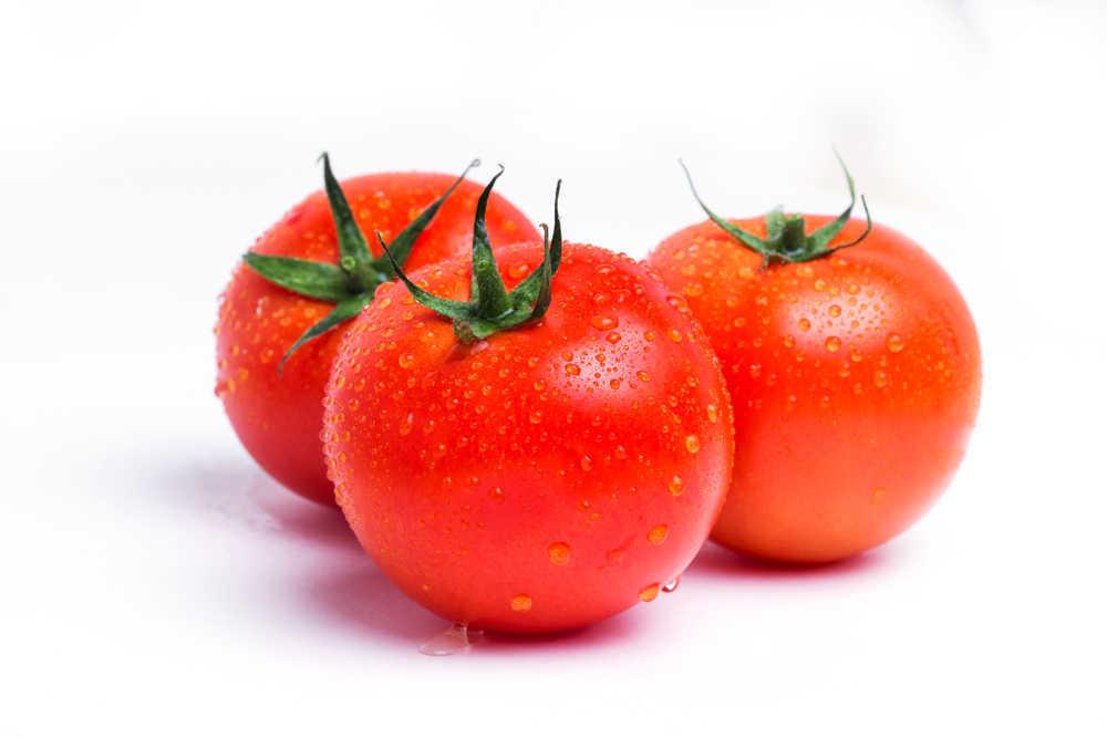 La cultura del tomate